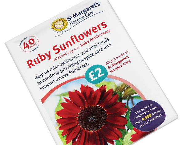 Buy your Ruby Sunflower seeds here